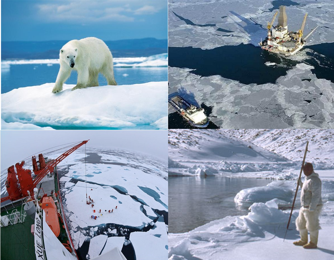 how to reduce climate change in the arctic